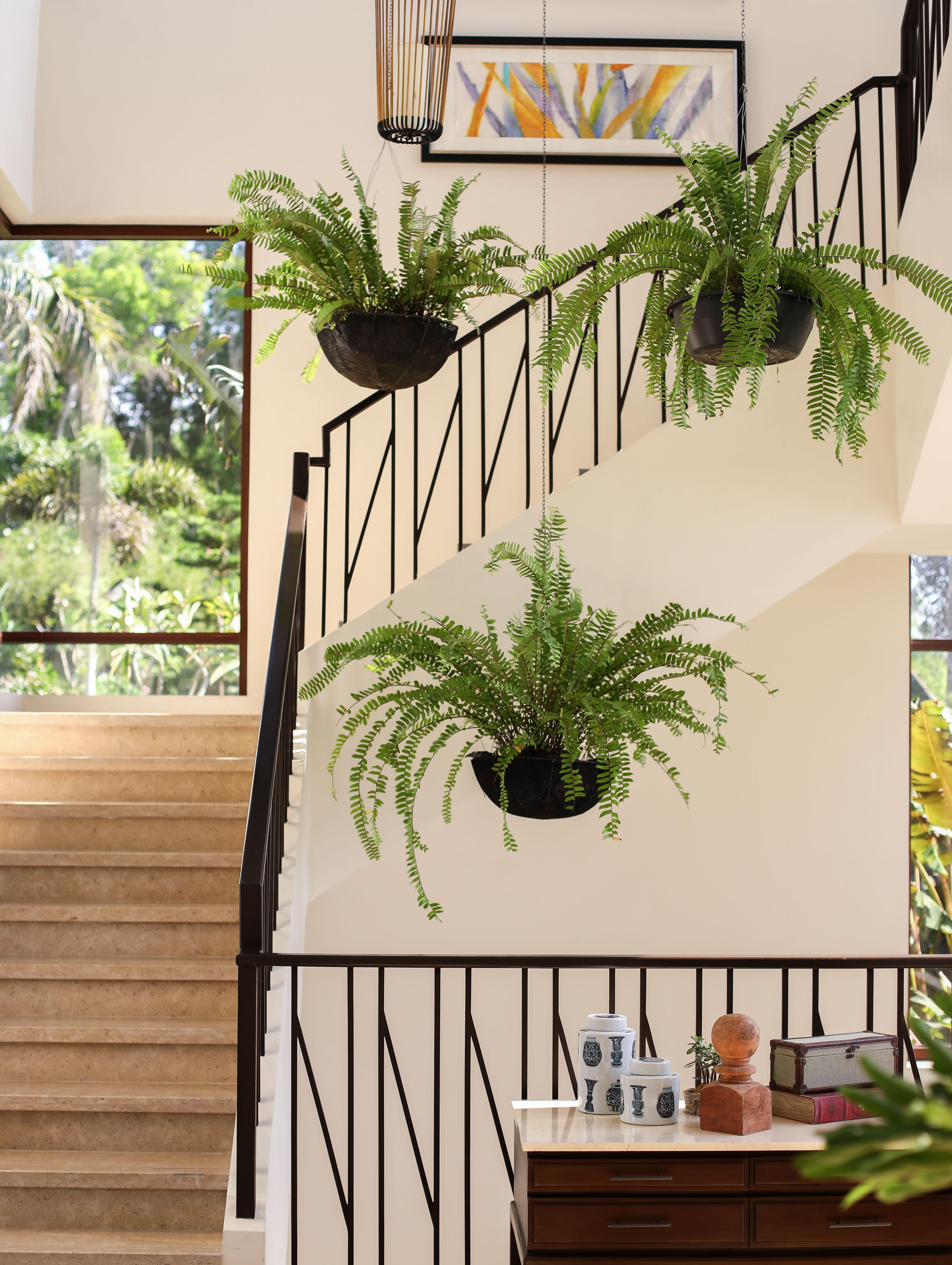 Art And Interior Design Pau Shoots